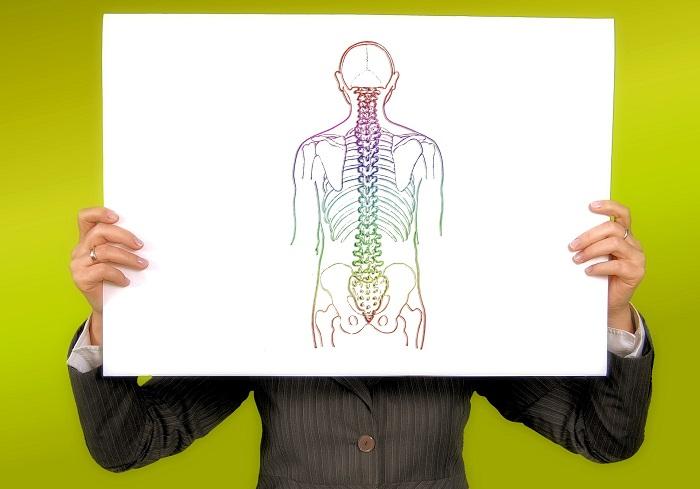 colonna-vertebrale-scoliosi